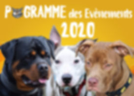Visuel Programme 2020.jpg