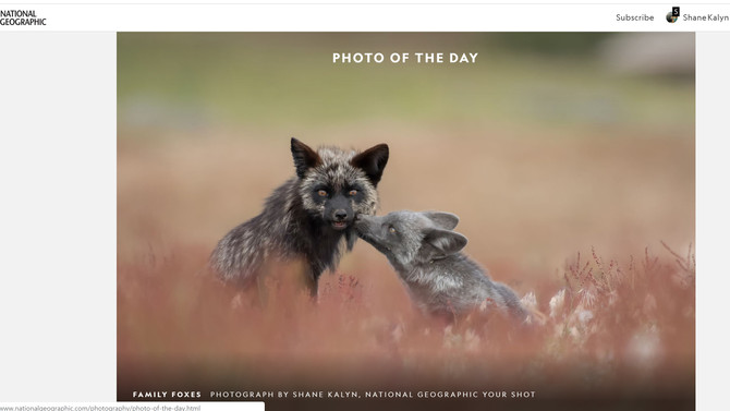 Amazing News - a '4 Element Photo' named today's National Geographic - Photo of the Day.