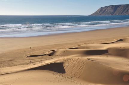 Seaside Dunes