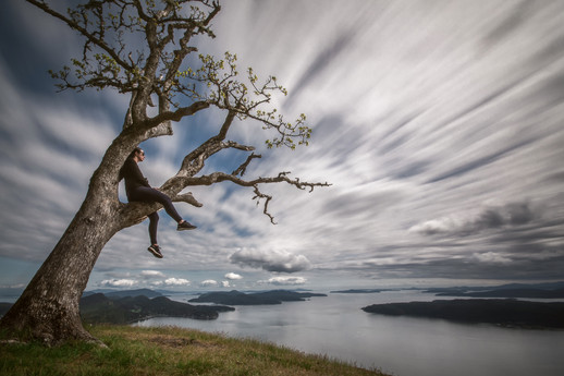 Galiano Lookout