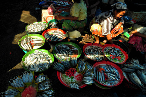 Fish Market Lady