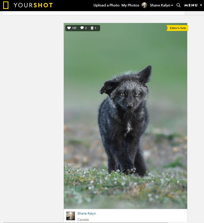 A '4 Element Photo' published in today's National Geographic Daily Dozen...