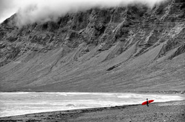 Red Surfer