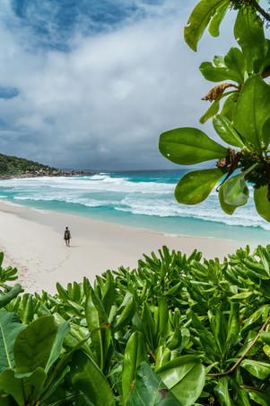 Seychelles Solitude