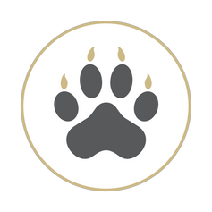 Lynx Central Icons