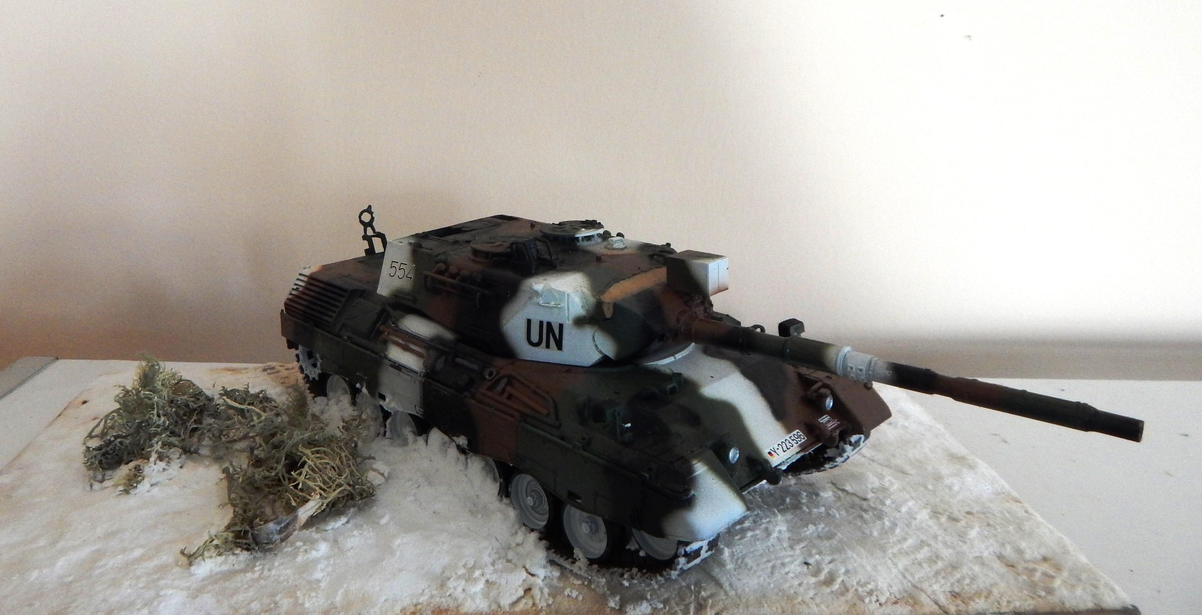 Леопард - 1. Сидельников Антон.