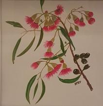 Native Blossom