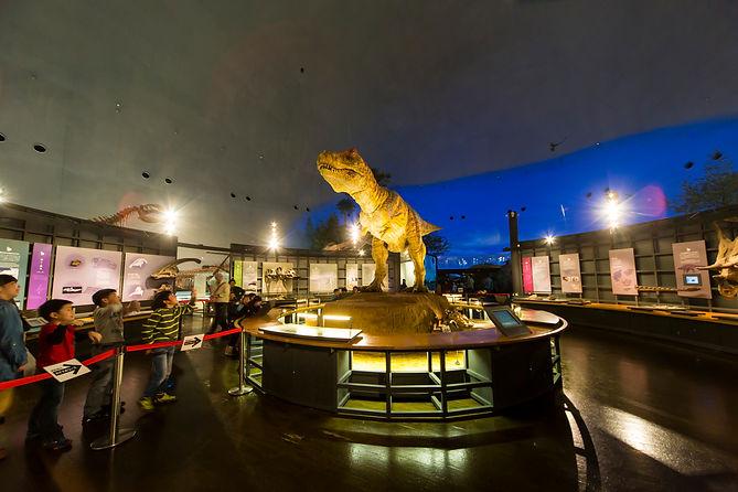 恐竜博物館1.jpg