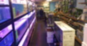 aisle 1.5.jpg