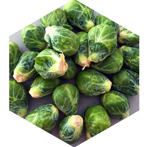 Brussel Sprouts Hex Tile one inch thick