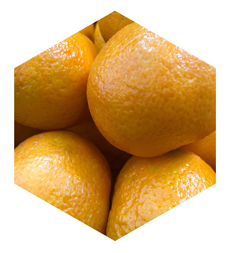 Oranges Hex Tile one inch thick