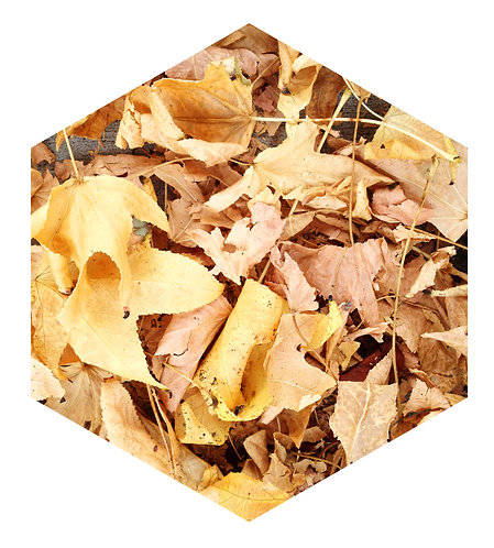 Yellow Leaf Tile one inch thick