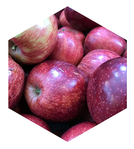 Apples Hex Tile one inch thick