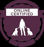 VSA-CDT-Online Badge.png