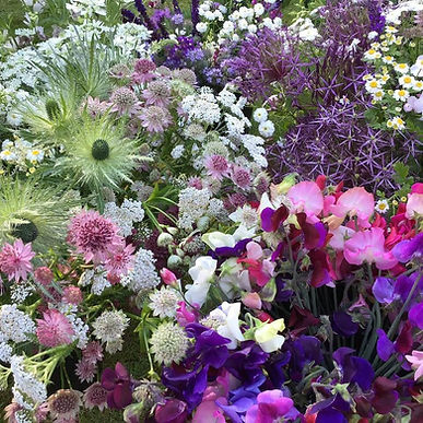 Seasonal Locally Grown Flowers for DIY weddings. All British Flowers