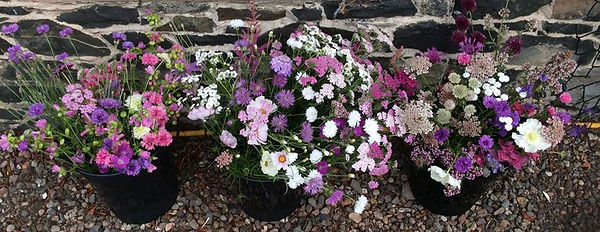 DIY bucket British grown flowers, seasonal flowers, Peebles flowers, wedding flowers, Scottish Borders flowers