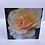 Thumbnail: Set of 4 Flower Greetings Cards