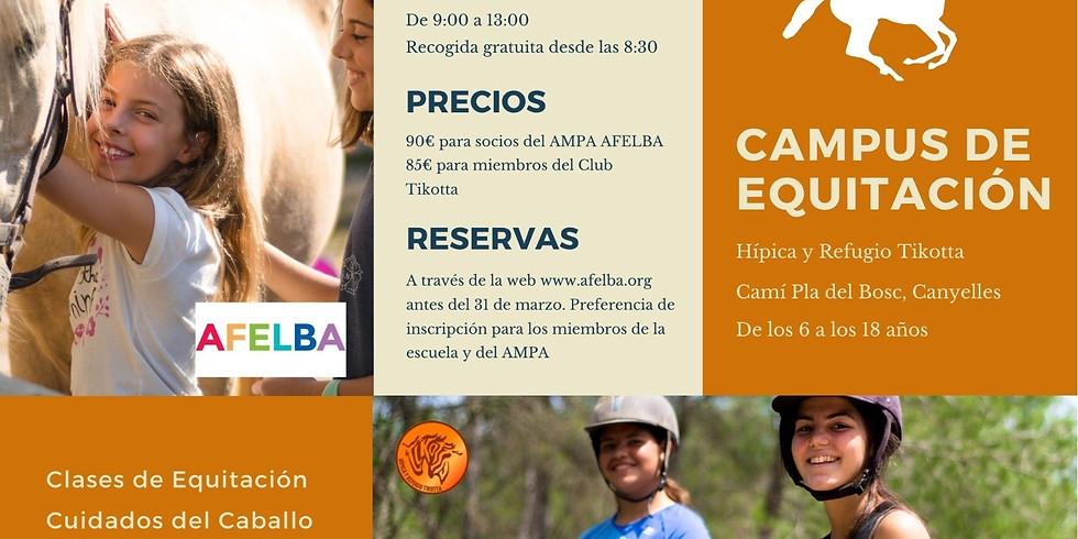 Campus de Equitación en Cubelles 6/4 al 9/4