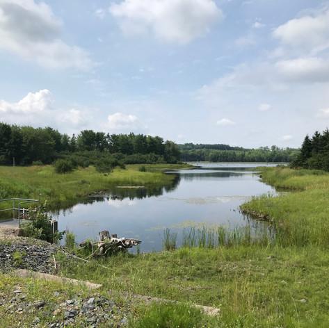 Polishing Pond & Weir