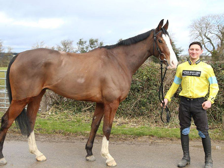 WHAT IS CORNERSTONE LAD'S REAL CHANCE AT CHELTENHAM.