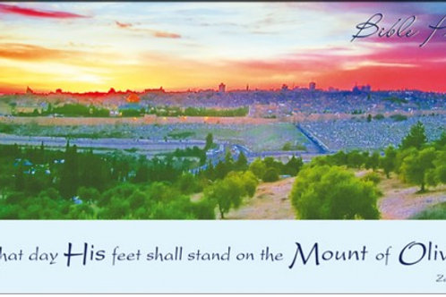 Greeting Card - Mount of Olives