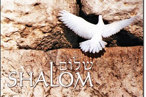 Magnet -Shalom Dove