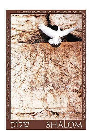 Greeting Card - Shalom Dove