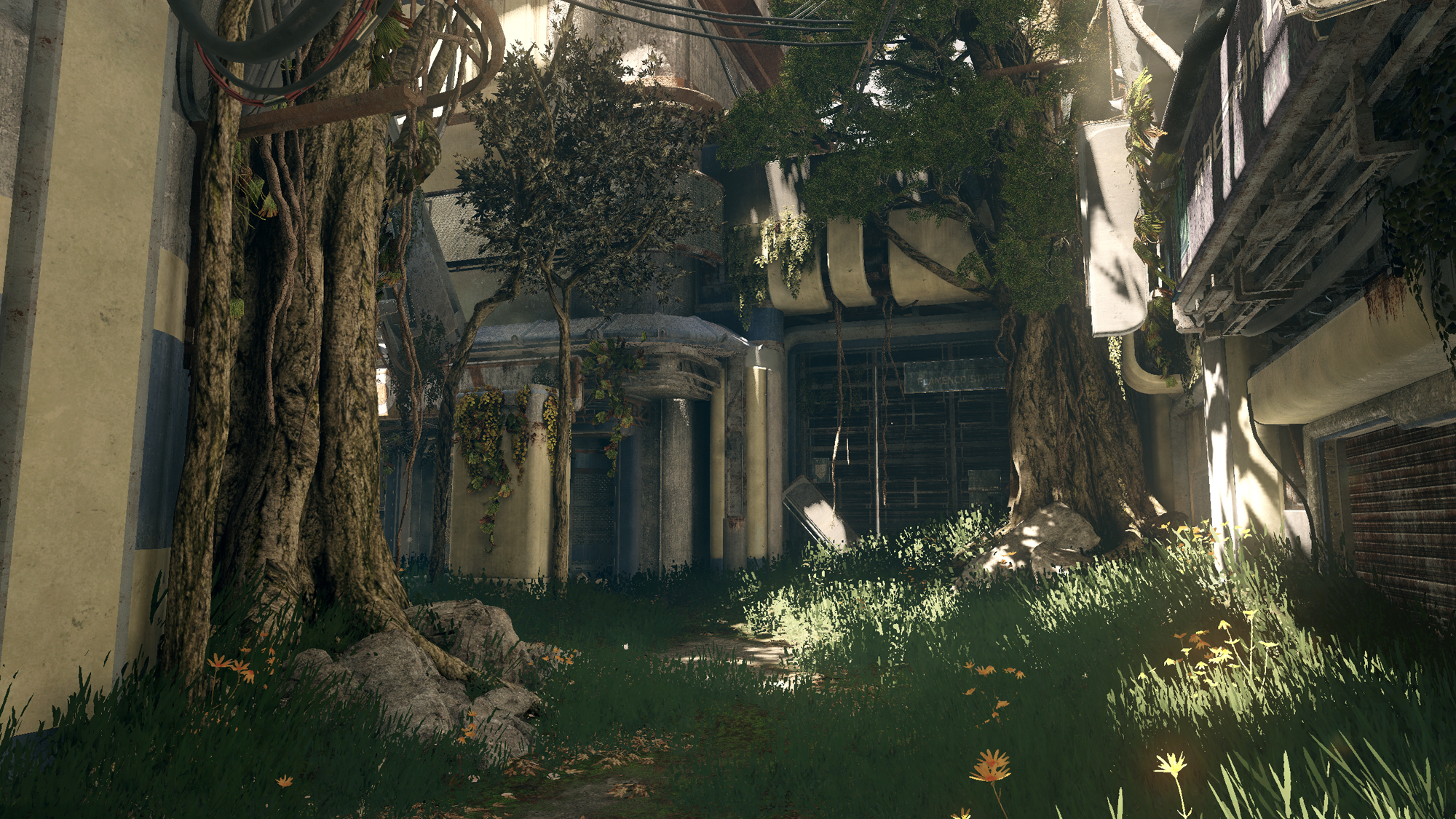 Overgrowth09