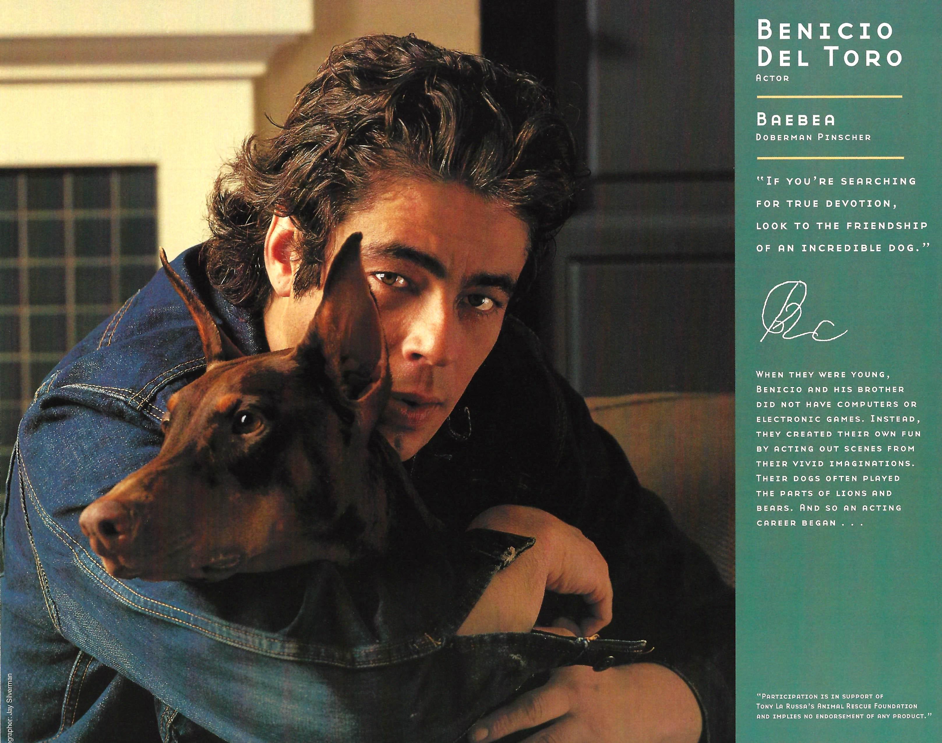 Benicio Del ToroforWeb.jpg