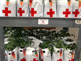 Red Cross Donation Bags