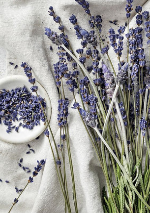 No. 9 Lavender