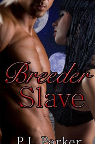 Deg'Nara Book Two: Breeder Slave