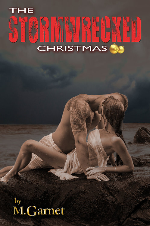 The Stormwrecked Christmas