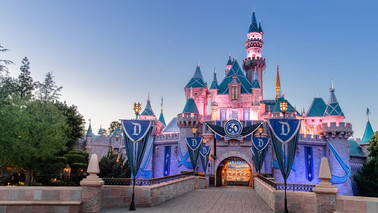 Judge Grants Class Certification in FCRA Lawsuit against Disneyland