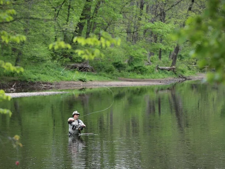 Interest in Pennsylvania's state parks has only grown even as pandemic restrictions lift