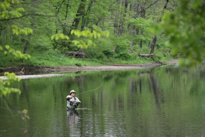 Peter Fuhr, of Bensalem, fly fishes in Neshaminy Creek in Tyler State Park in Newtown on Monday