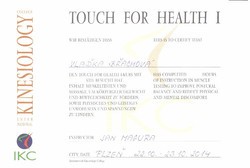 Touch for health 1.