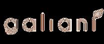 logo-gali_edited_edited.png