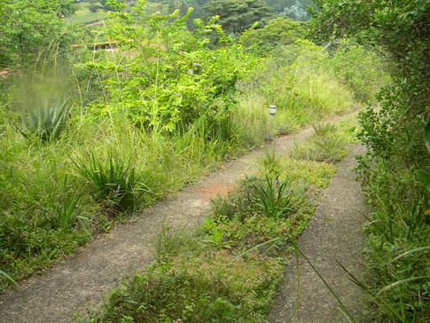 Slow and capture off steep slopes