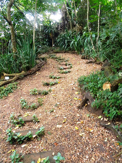 Recycled Brick Path