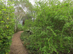 Inviting Pathways