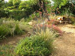 Gravel plants