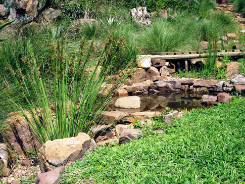 Directing stormwater through the garden