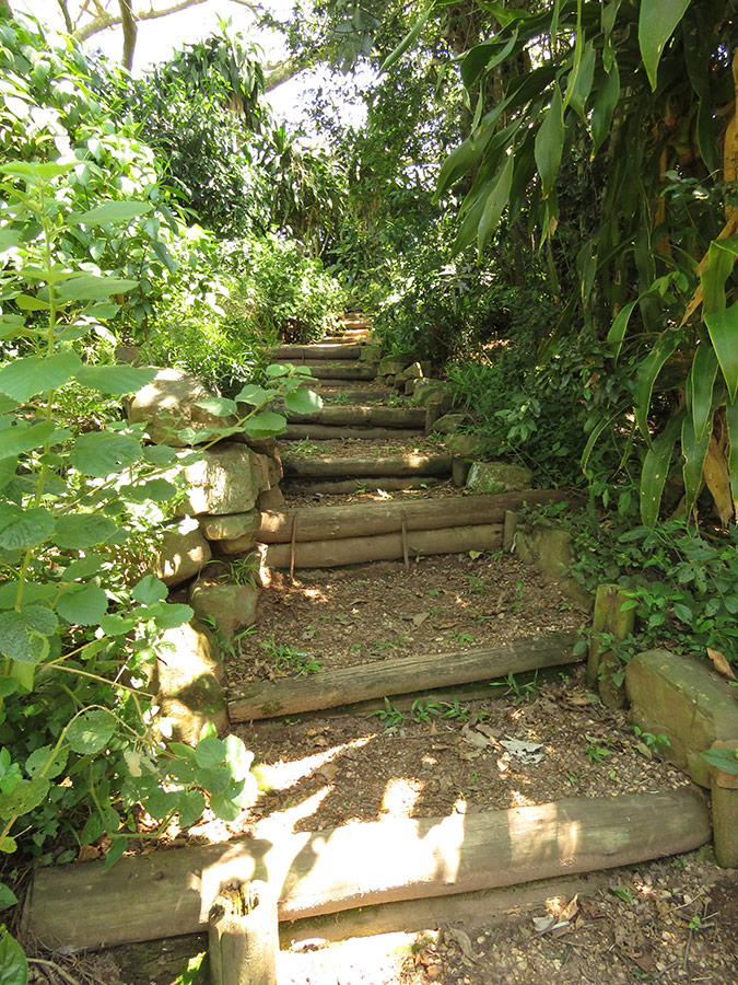 Steps for steep access
