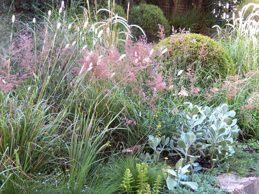 Water wise walled garden