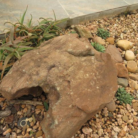 Desert Garden rocks