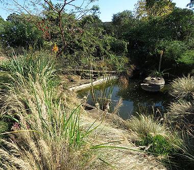 Wildlife water feature