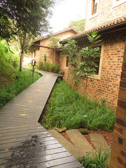 Wooden Access Pathway