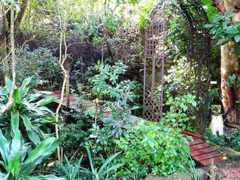 The Future of Gardening