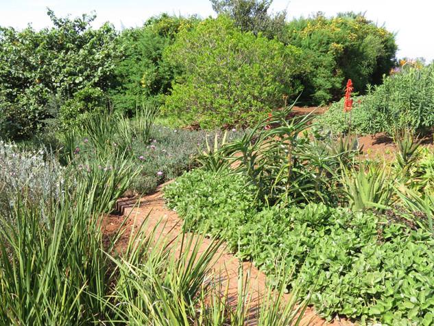 Mixing materials in an informal garden path